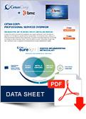 DataSheet-Cetan-Corp-BMC-Professional-Services-Overview